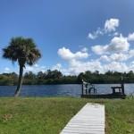 View of Lake (1)