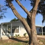 Front View Oak