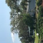 curb view
